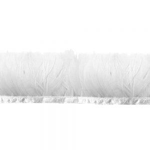 GALON PLUMES CANARD 05CM blanc