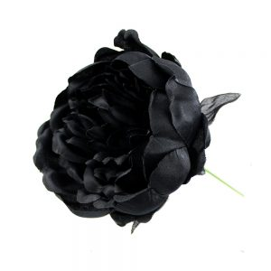 PIVOINE COLLECT noir