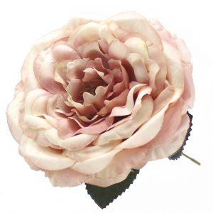 ROSE EVELYN 14CM rosenude