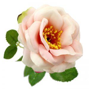 ROSE NANCY 08CM rosenude