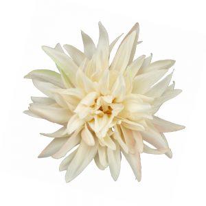 fleur dahlia teodora ecru