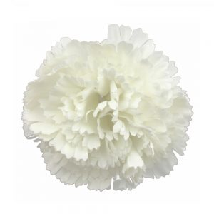 fleur oeillet 12 cm ecru