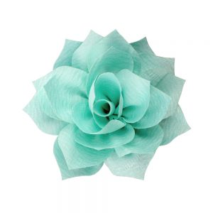 fleur stella vert eau