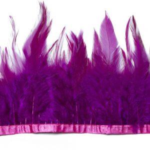 galon plumes coq violet