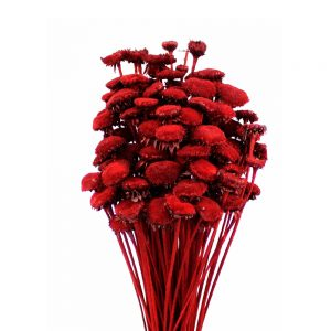 pali pala preserve rouge