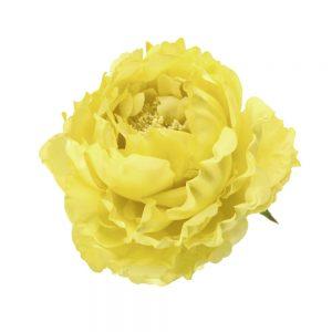 pivoine adestes 14 cm jaune