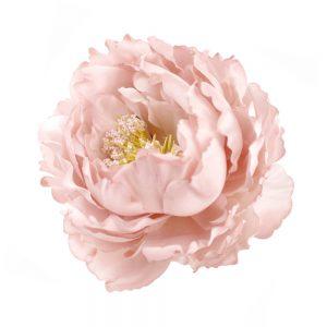 pivoine adestes 14 cm rose nude