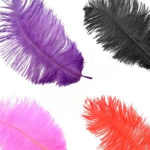 Plumas avestruz 15 20 cm montaje